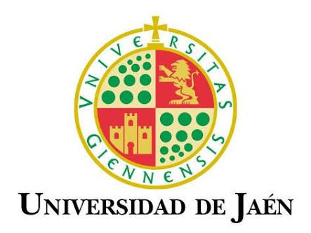 50 bolsas de estudo para Graduação na Espanha | Universidad de Jaén
