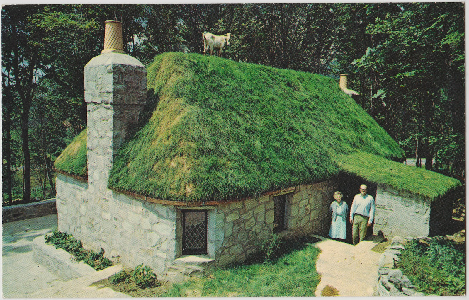 Goathouse Living Roofs Pinterest Highlands House