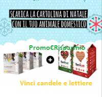 Logo Sanicat: vinci gratis pack di candele profumate e lettiere