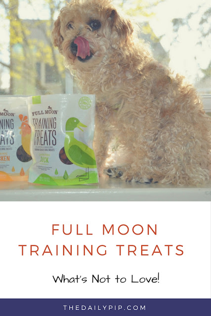 Full Moon Training Treats are bite-sized, flavor-filled, all natural healthy dog treats perfect for training rewards