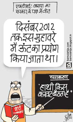 hindi cartoon, FDI in Retail, congress cartoon, mayawati Cartoon, bsp cartoon, indian political cartoon