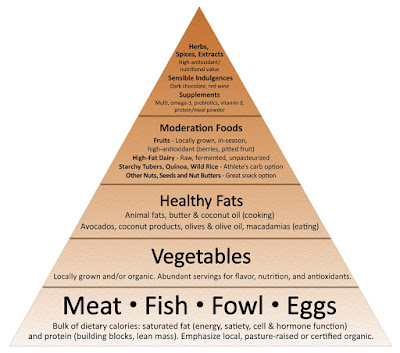 Paleo; Hunting and gathering a road to health, or walking a path to nutritional deficiencies?