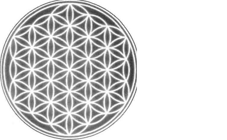 Autochtone Le Mystère De La Fleur De Vie
