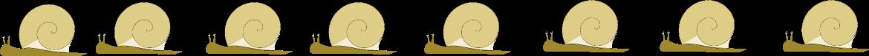 snail border