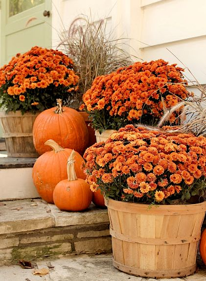 The fresh pumpkins and orange flowers on the steps are great fall outdoor decor pieces.