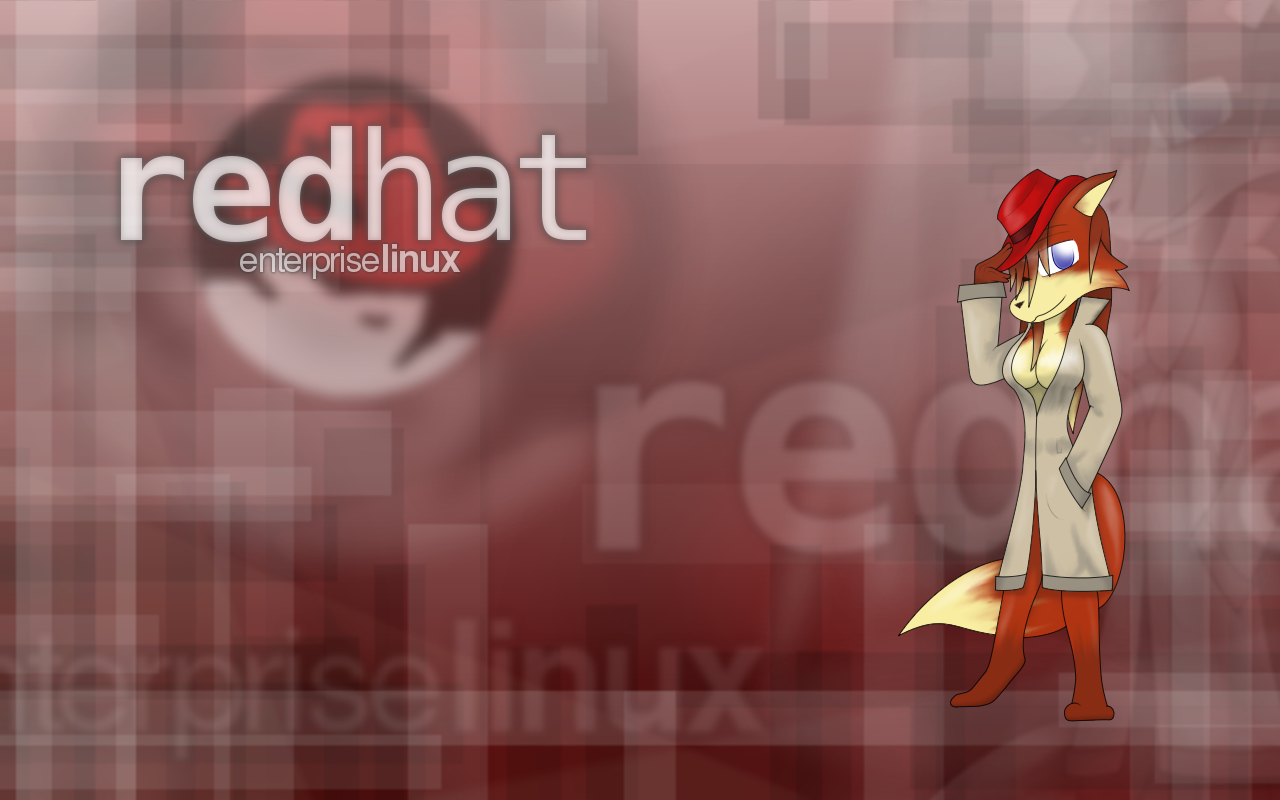 Red Hat Enterprise Linux 6 0 x86 DVD ISO ~ The techpark