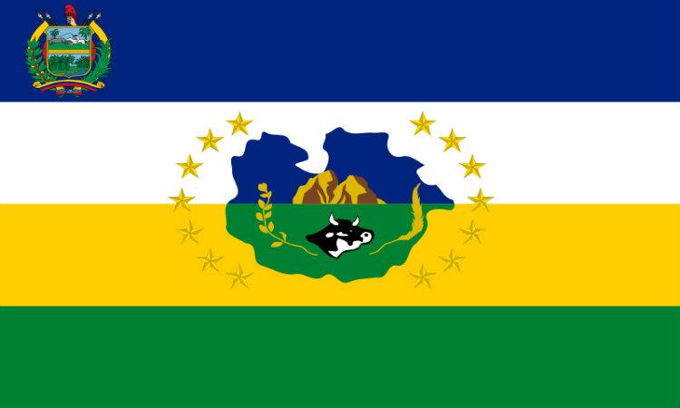 Bandera Guárico
