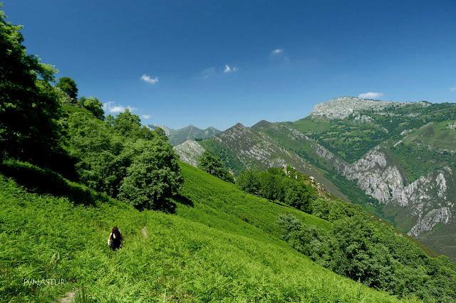 Sierra del Crespón - Rioseco - Asturias