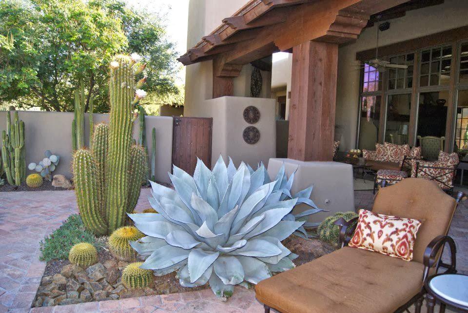Jardines en zonas aridas o des rticas for Iluminacion para palmeras