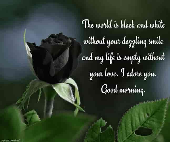 best good morning text ever with black rose