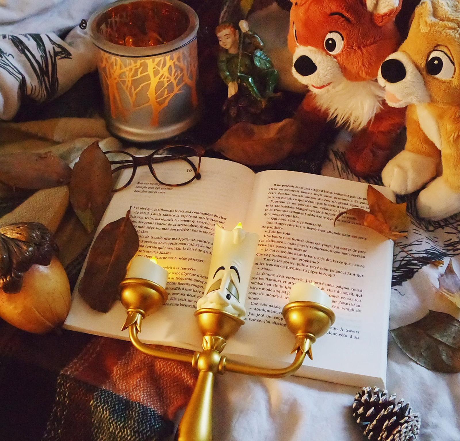 Essentiels d'automne Blog Coin des licornes littéraire lifestyle Toulouse