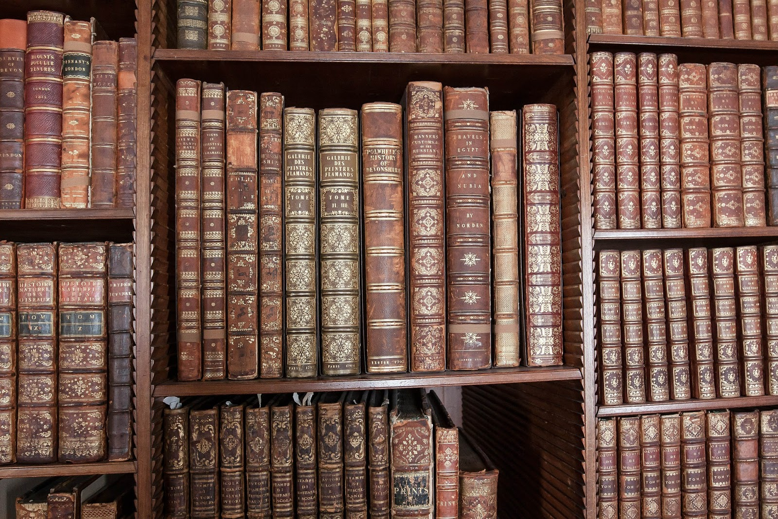 Do czego służy biblioteczka?