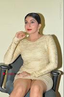 Actress Pooja Roshan Stills in Golden Short Dress at Box Movie Audio Launch  0075.JPG