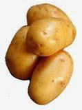 Khasiat buah kentang