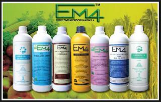 membuat em4, cara membuat em4, cara membuat em4 sendiri, membuat em4 pertanian.