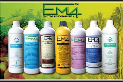 Cara membuat EM4 dari sisa sayuran yang paling OK