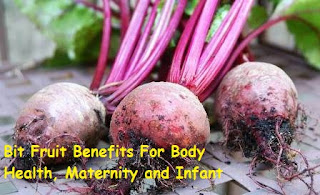 Bit Fruit Benefits For Body Health, Maternity and Infant