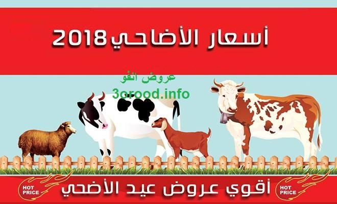 اسعار اضاحى العيد 2018 سعر خروف العيد سعر الجدى سعر العجول