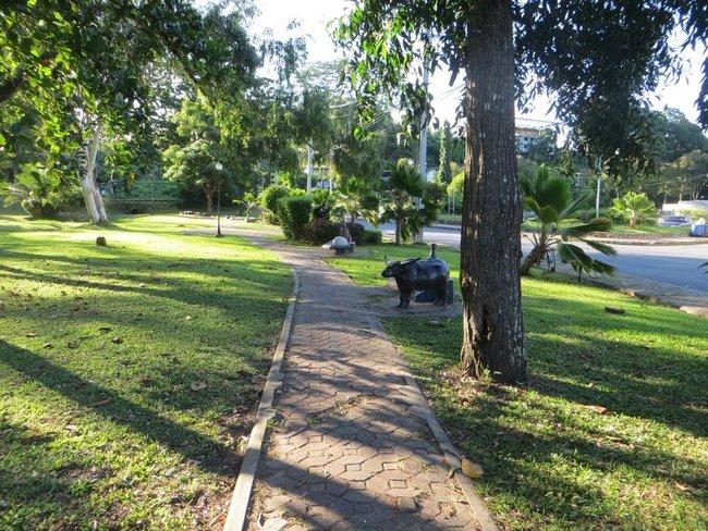 парк в краби таун