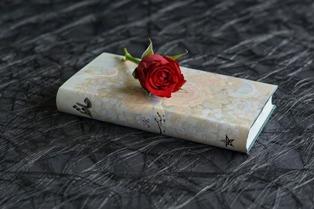 foto belle di rose su libri