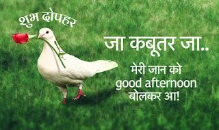 Good Afternoon Janu