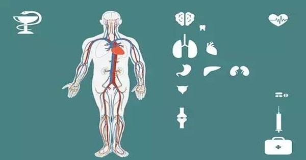 這些日常習慣中,最傷腎的原來是它!(代謝身體廢物)