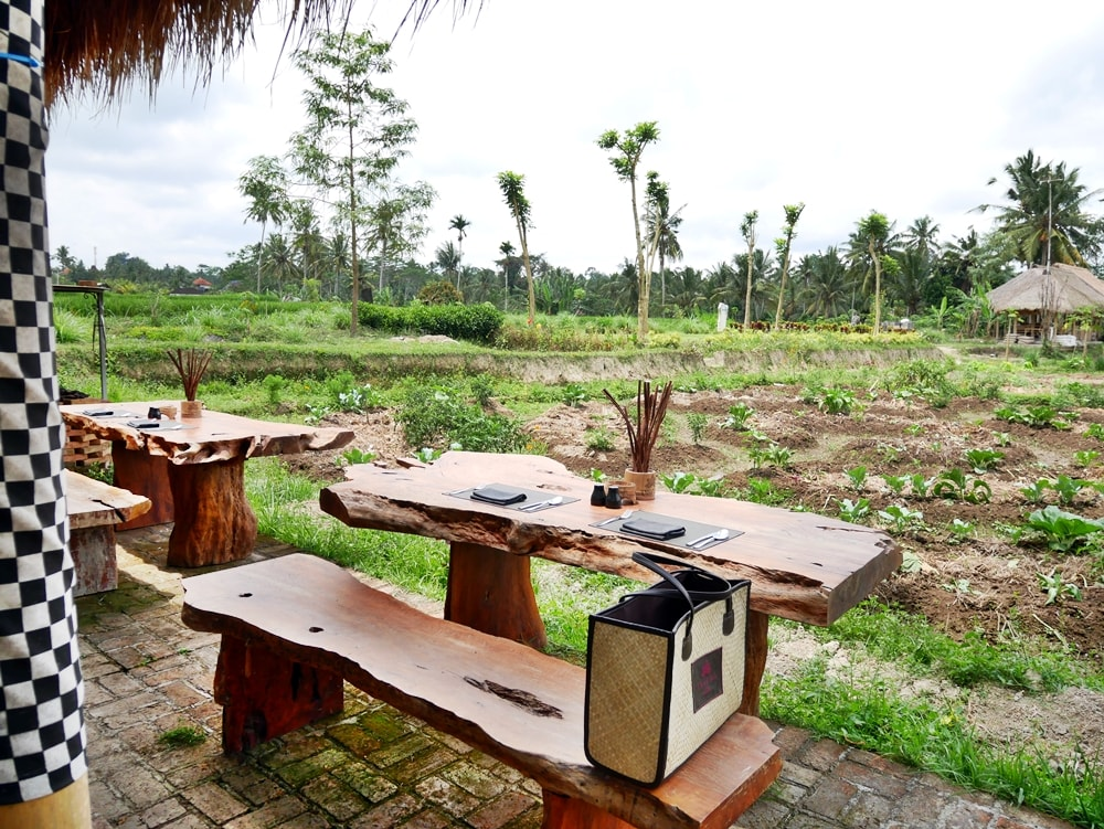 PERMACULTURE ACTIVITIES AT DESA VISESA UBUD BALI