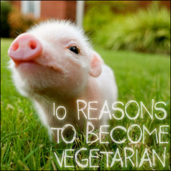 10 Reasons to Become Vegetarian