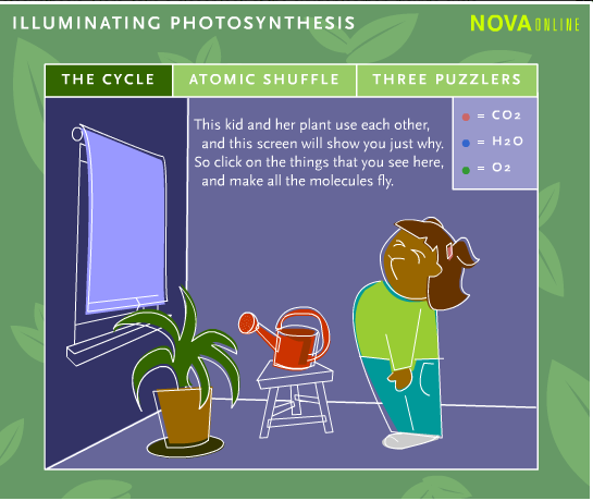 7th Grade Science 2014-2015: Photosynthesis Webquest