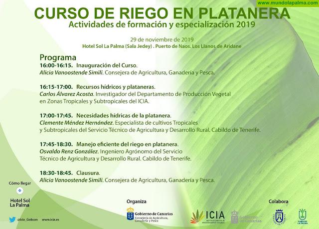Curso de Riego en Platanera desarrollado por el ICIA