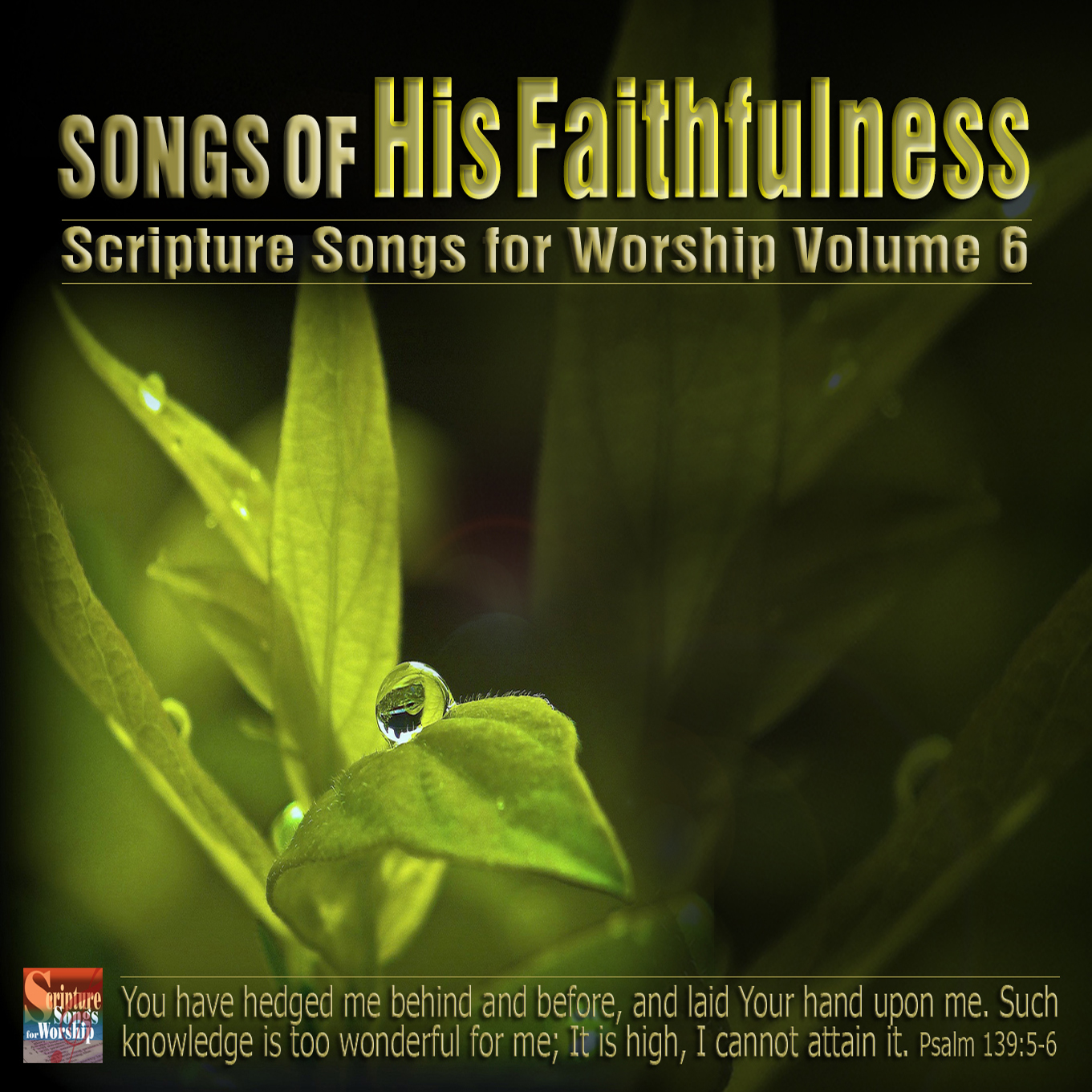 Scripture Songs for Worship : Songs of His Faithfulness
