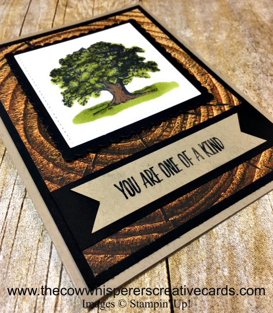 Masculine Card, Lovely as A Tree, Wood Textures Paper, Stampin UP
