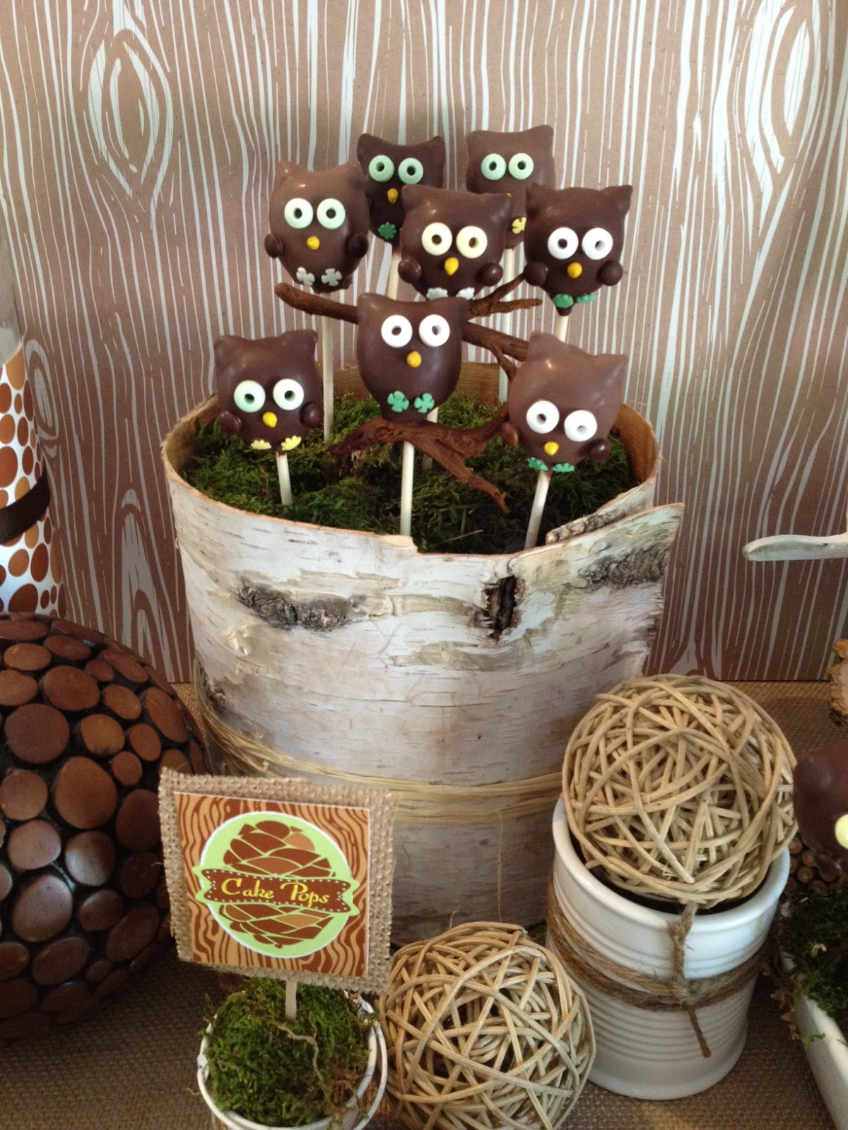 Honeycomb Events Amp Design Rustic Faux Bois Amp Owl Dessert