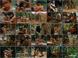 The Nomads of the Rain Forest. 1984.