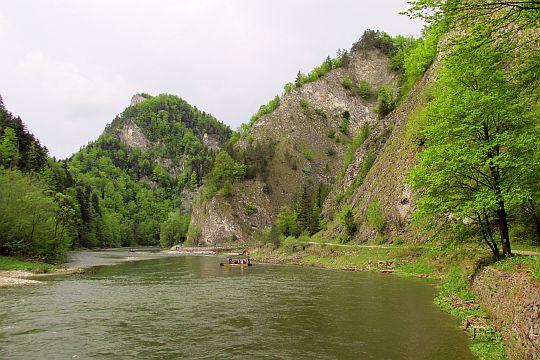 Ujście Leśnickiego Potoku i skała Wylizana (słow. Vylízaná), za którą Dunajec skręca w prawo.
