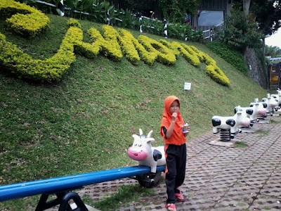 Cimory on the valley bawen