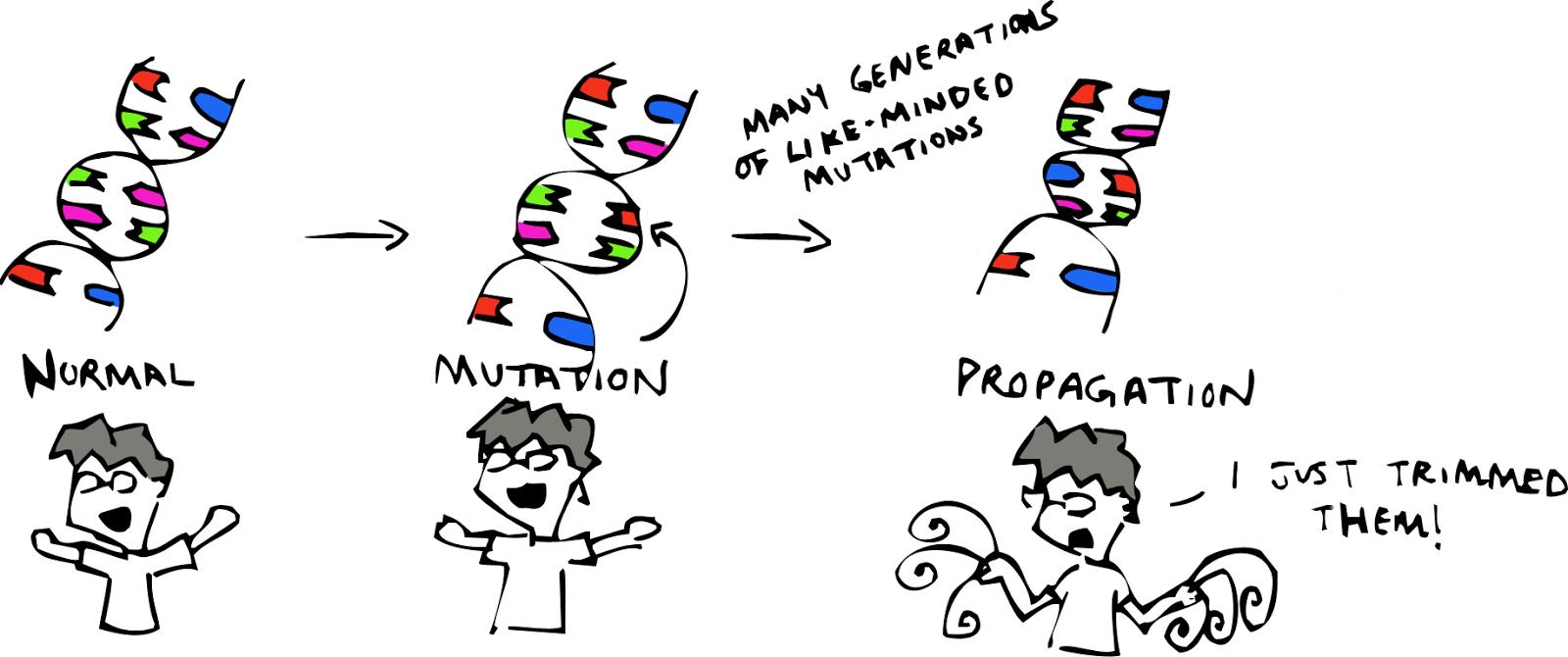 Sketchy Science: Evolution: How Come We Still Got Monkeys?