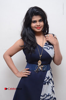 Telugu Actress Alekhya Stills in Blue Long Dress at Plus One ( 1) Audio Launch  0022.jpg