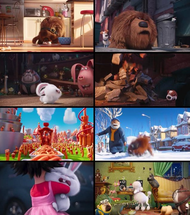 Download The Secret Life Of Pets English Movie In Mp4 Dubbed Hindi