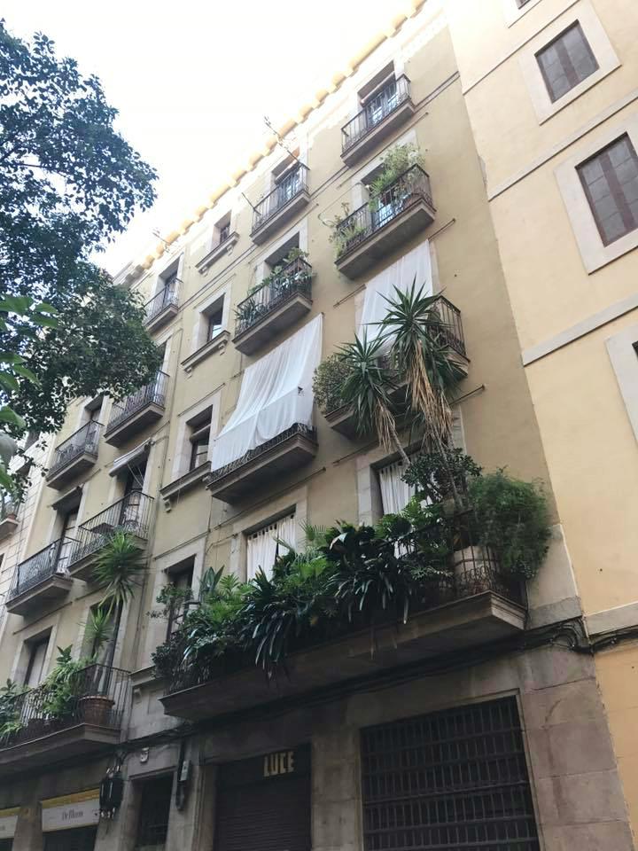 Spain 2017: Barcelona    Organized Mess