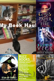 The newest additions to my TBR pile:  Quintland Sisters by Shelley Wood, No Exit by Taylor Adams, Glow : Book I, Potency by Aubrey Hadley, Buzz Books 2019 YA Spring/Summer, That Ain't Witchcraft by Seanan McGuire, Fighting Destiny by Amelia Hutchins, Bad Magic set, Enter the Witch by Andris Bear, Blood Vice by Angela Roquet, Big Magic by Elizabeth Gilbert, It's Never Too Late To Begin Again by Julia Cameron, Beneath the Sugar Sky by Seanan McGuire, Girls of Paper and Fire by Natasha Ngan, Down Among the Sticks and Bones by Seanan McGuire, and In An Absent Dream by Seanan McGuire