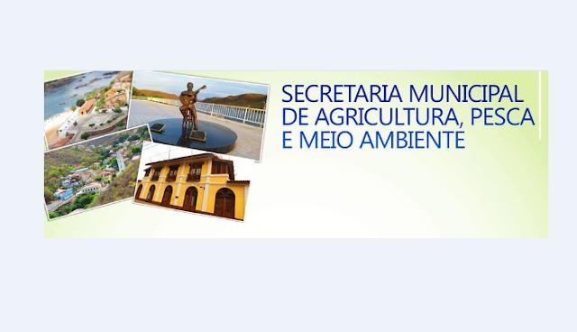 Secretaria de Agricultura, Pesca e Meio Ambiente de Piranhas, realizará a apreensão de animais soltos nas ruas, estradas  e terrenos para o curral municipal a partir de segunda-feira (9)