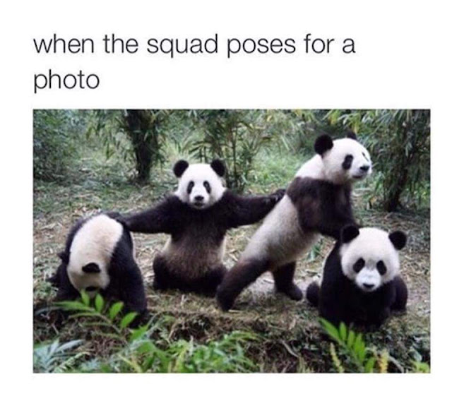 When the Squad Poses for a Photo Meme