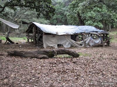 Campamento en el Picacho de las Catarinas en el Cerro Grande de Ameca