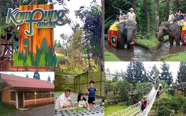 Kampung Pandu Bogor Wisata Rekreasi Dan Edukasi