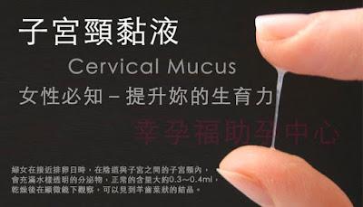 http://pregestational.blogspot.tw/2014/05/cervical-mucus.html