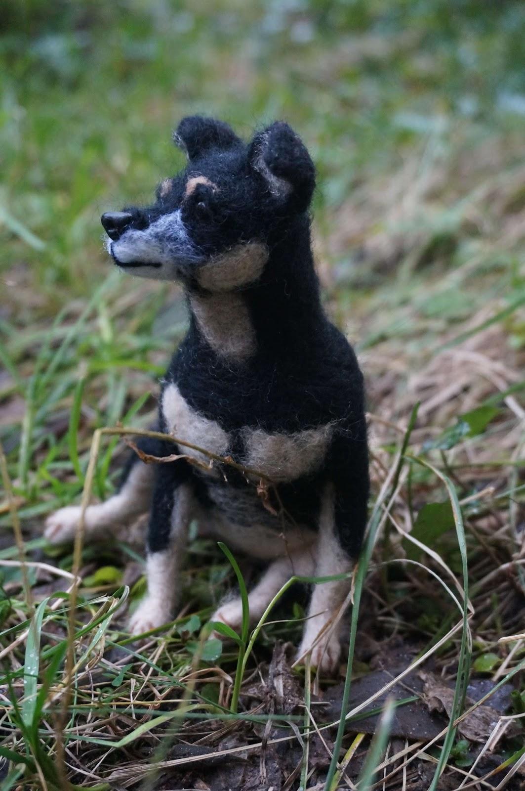 Kolejny psi portret - Saba