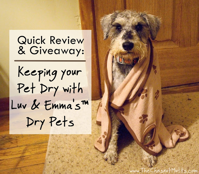 Quick Review & Giveaway: Keeping your Pet Dry with Luv & Emma's™ Dry Pets