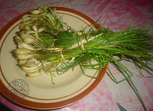 Kucai / Lokio/bawang batak (Allium chinense)