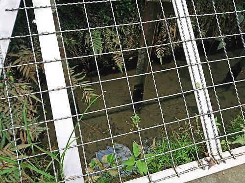 イリヌカー(西の井泉)の写真